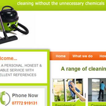 Cleaning WordPress website