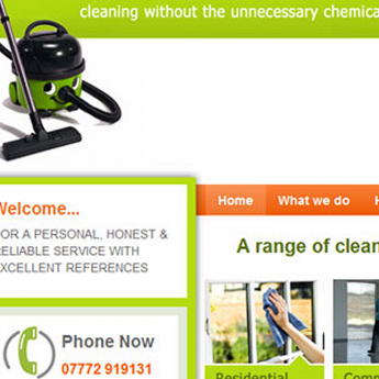 Cleaning WordPress website